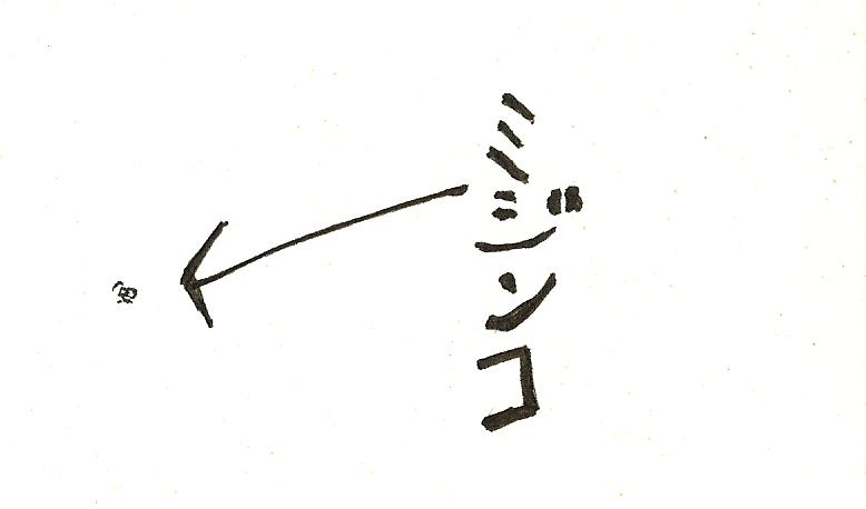 Mijinn_2