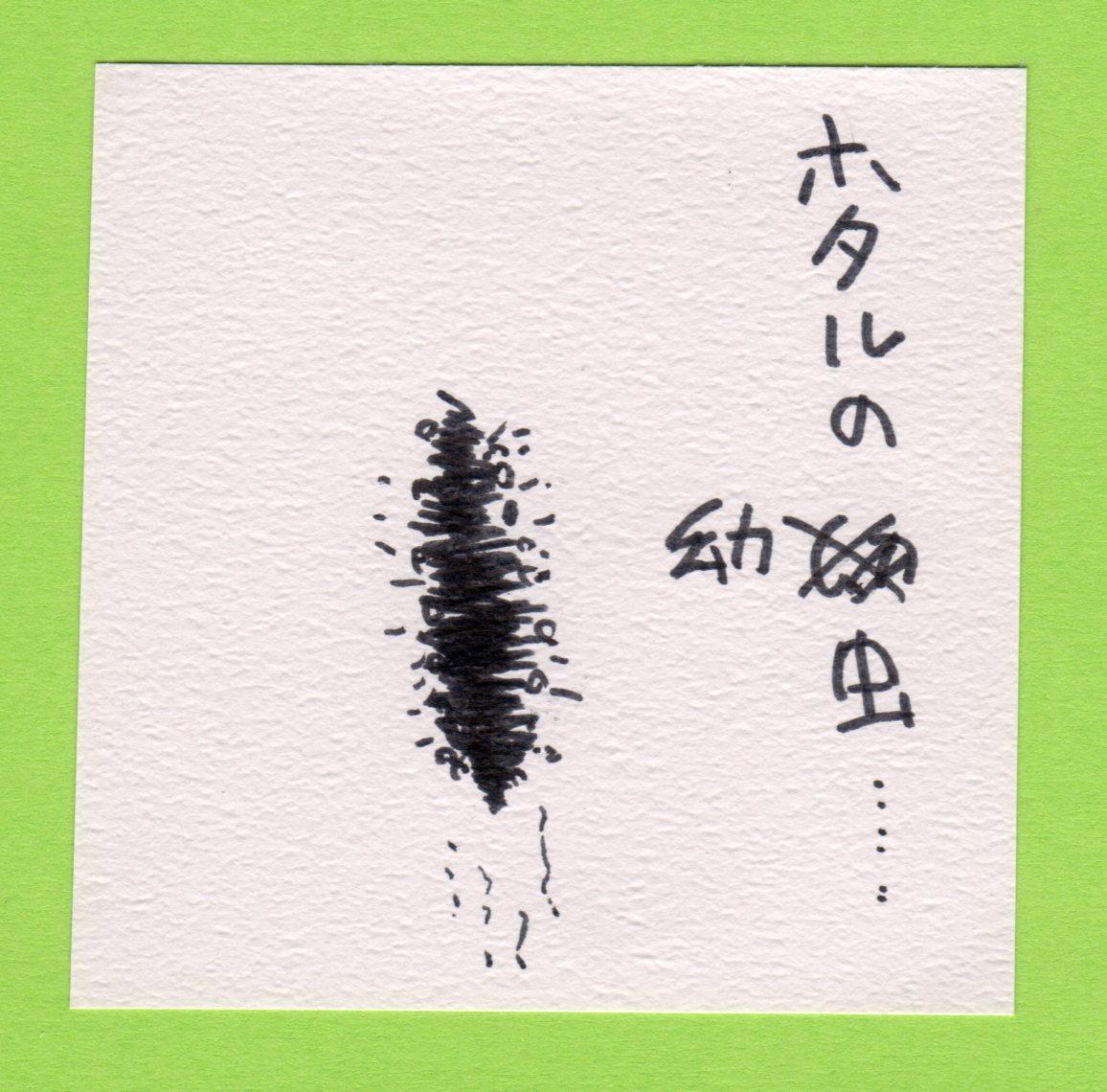 Hotaru030_4